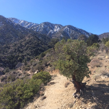 The trail leading out of Devil's Punchbowl and toward Devil's Chair/Burkhart Saddle.