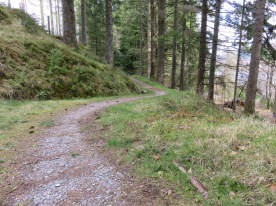 More of the trail from Gairlochy.