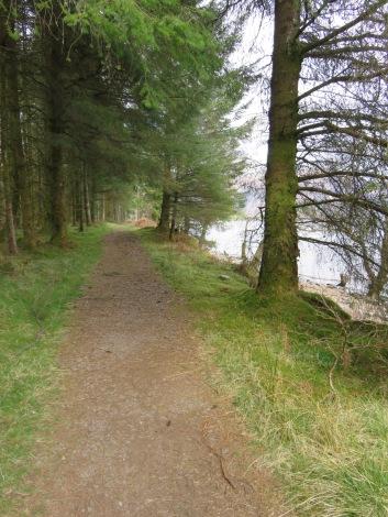 Peaceful stretch along Loch Lochy.