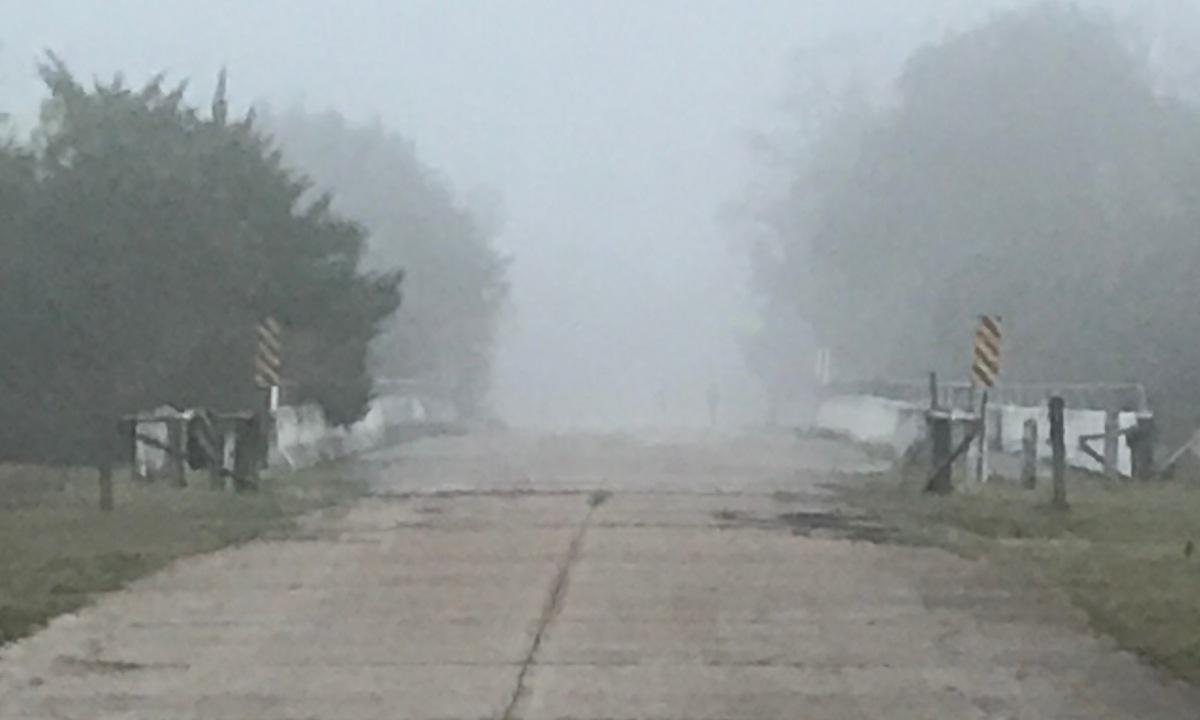 Race Recap: Horseshoe Trail Run: Houston,TX