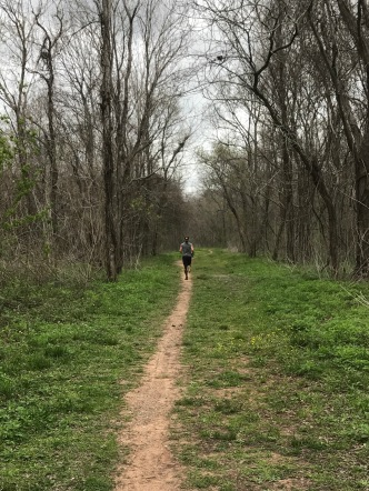 Lavender Trail