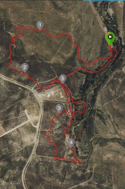 This is the route I ran, you can see the little out and back segment when I went the wrong way in the top left corner.